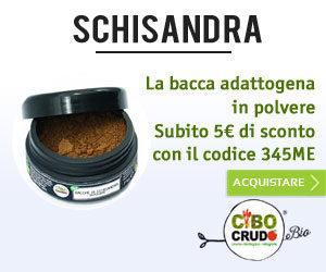 schisandra_polvere