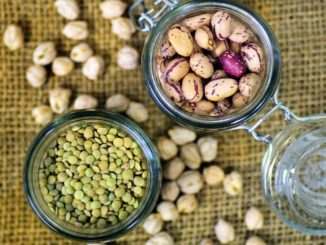 alimenti proteici vegetali